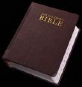 Jeruzalémská Bible - Standardní zmenšené provedení s označením biblických knih